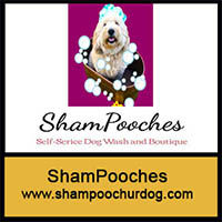 200ShamPooches dog.jpg