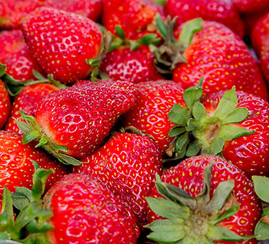 SLC canon Apr20-10 Strawberries 400.jpg