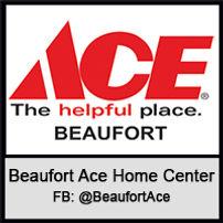 Beaufort Ace Plat200.jpg