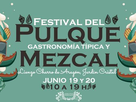¡Festival del Pulque, Gastronomía típica y Mezcal!
