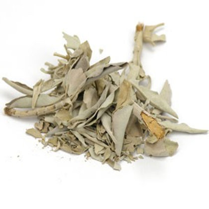 White Sage Leaf, Wildcrafted