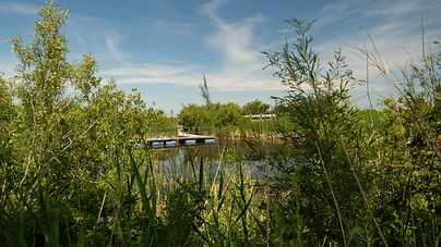 Oak Hammock Marsh Rockwood Manitoba