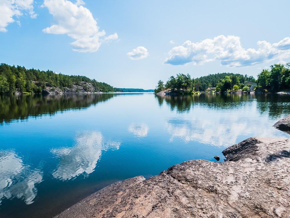 lakeside rocks and trees