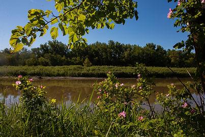 Assiniboine River Beaudry Park Manitoba