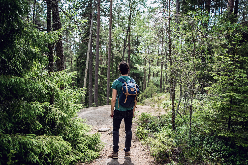 A person hiking surrounded by trees
