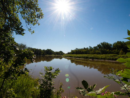 Healthy Rivers are Essential for Lake Winnipeg's Survival