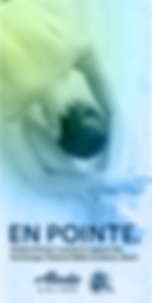 17ALK140 BALLET WEB AD.PNG