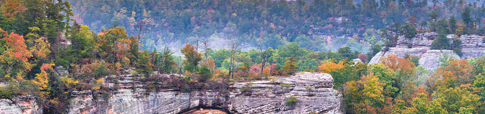 red_river_gorge_ky.jpeg