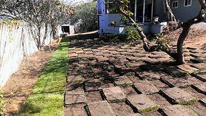 yard remodeling
