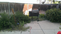 BEFORE Patio Cleanup