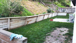 Before Retaining Wall Reconstruction