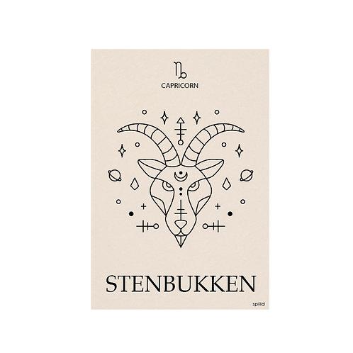 Stjernetegn. Stenbukken.