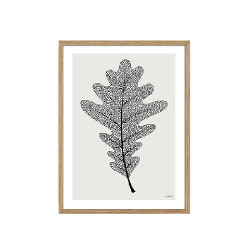 Black leaf 1