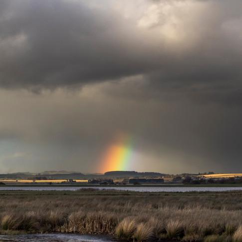 Vane Farm Rainbow 002