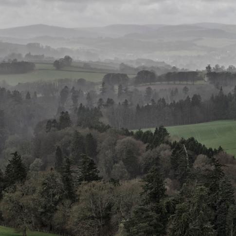 Scott's View Grey 002