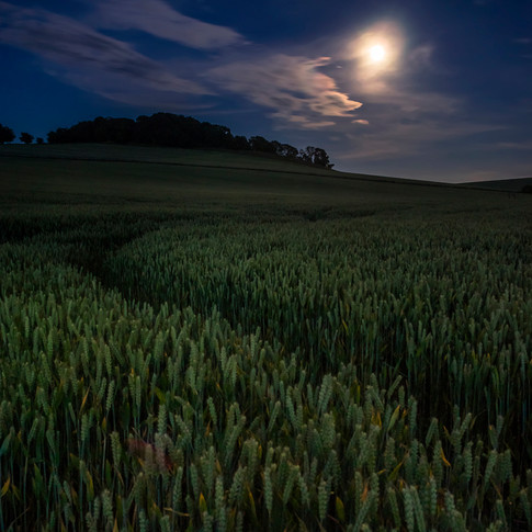 Moonrise over Myrecairnie Hill