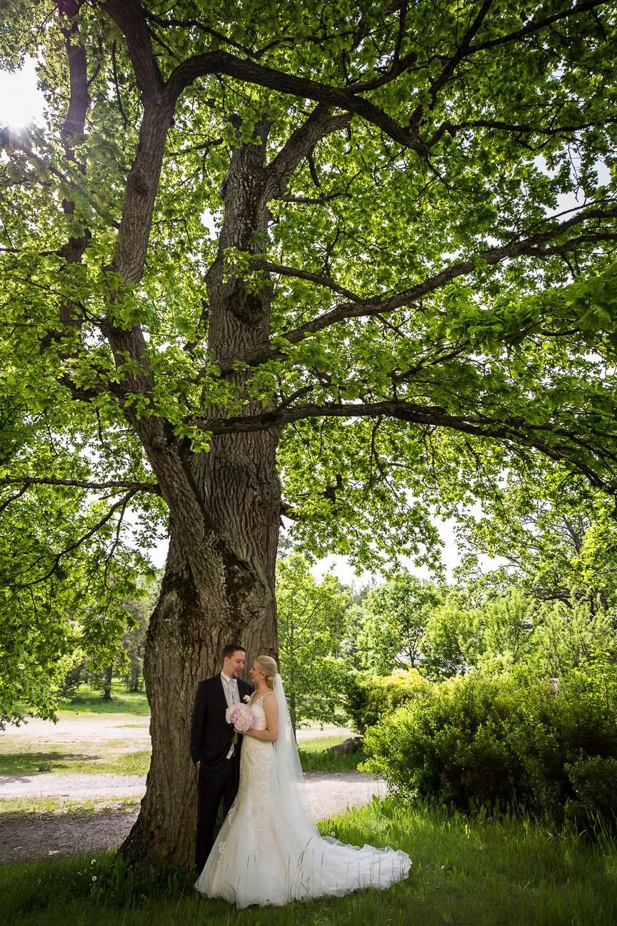 WeddingPhoto-78.JPG