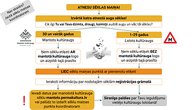 Seklu_mainas_logikas_shema1.png