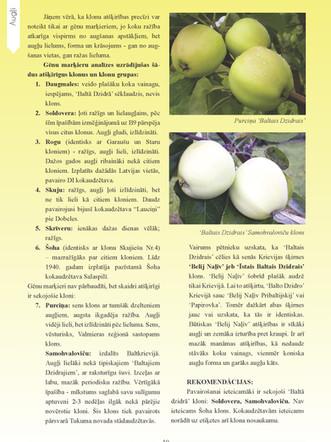 Profesionala_DARZKOPIBA_13_Page_10.jpg