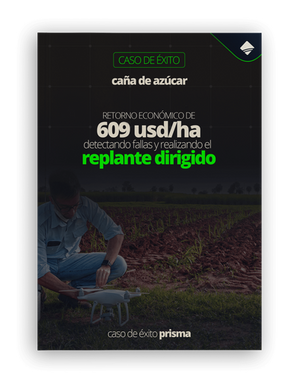 book_can%C3%8C%C2%83a_corregido_(1)_edit