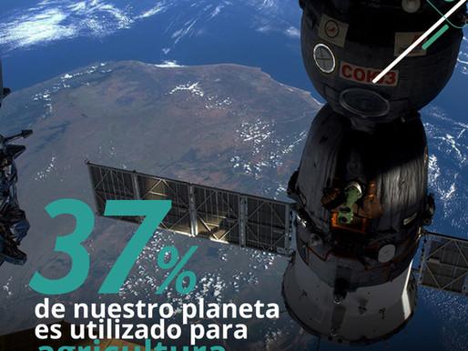 ¿Cómo los satélites hacen más eficiente la agricultura?