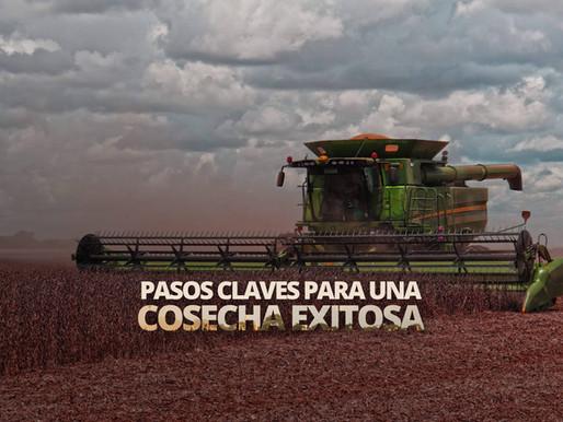 ¿Cómo evitar pérdidas en cosecha?