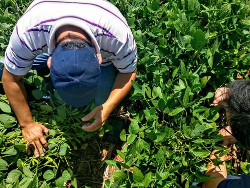 ¿Modernizar el agro?, primero es importante capacitar la mano de obra.