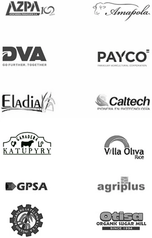clientes agricultura digital paraguay