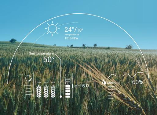 ¿Cómo la Inteligencia Artificial (AI) revoluciona la agricultura?