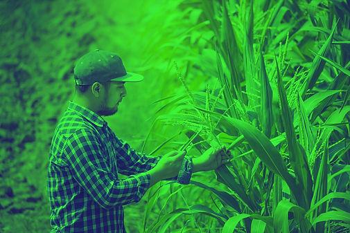 bigstock-smart-farming-farmer-using-di-3