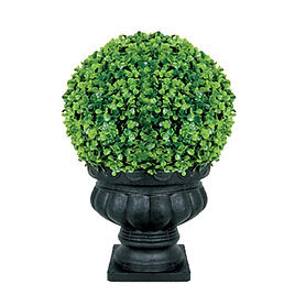 Green Boxwood Garden Sphere in Black Urn