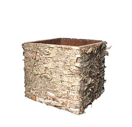 Birch Cube Container