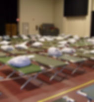 Cots-at-the-Shelter2.jpg