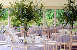 Flowers in Marquee