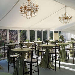 Small marquee for party