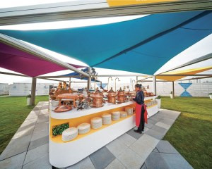 Outdoor Dining Canopy .jpeg