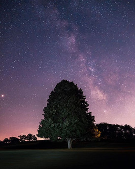SCITUATE MILKY WAY