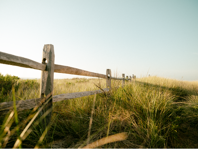 NANTUCKET FENCES