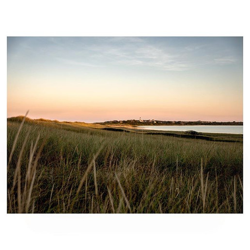 Nantucket Scape #7