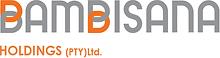 Bambisana Holdings Logo