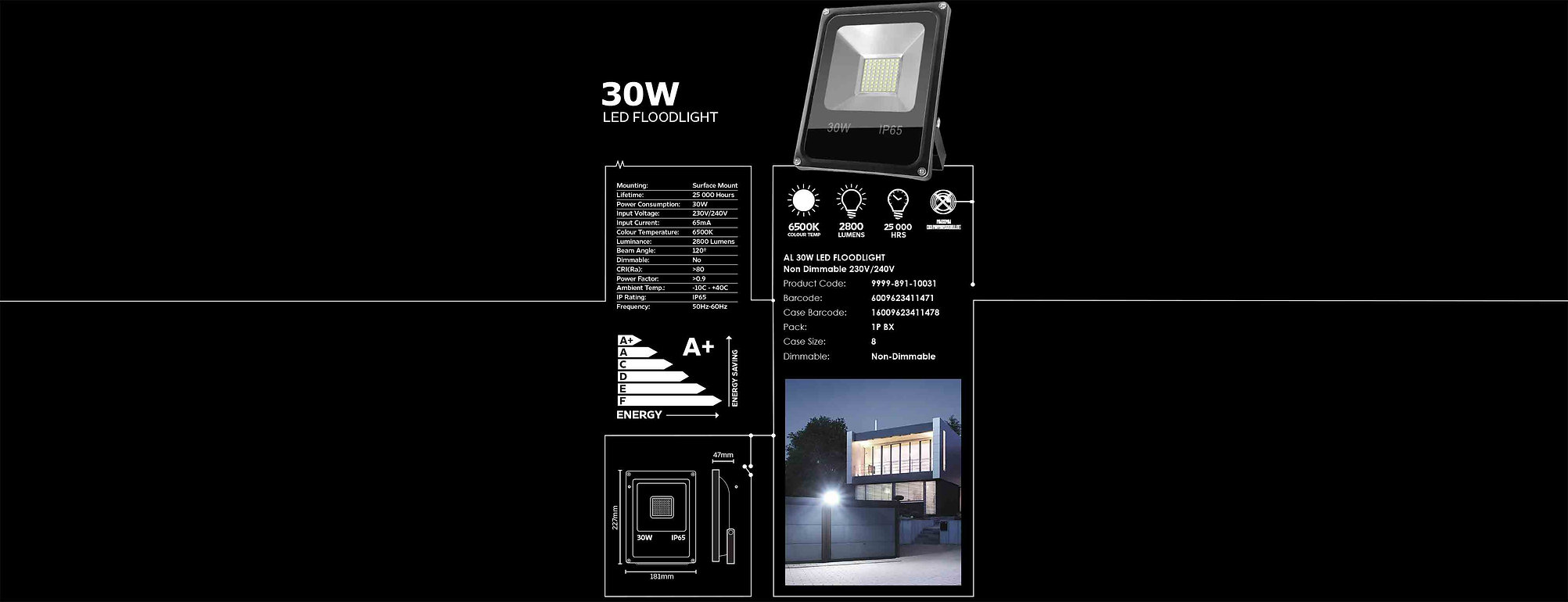 amplux-led-floodlight-30w.jpg