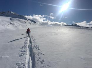 Unterer Teil Mandrone Gletscher