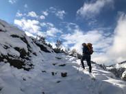 Zwischen Käseralpe und Wildenfeldhütte