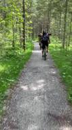 Durch den Wald an Hinterstein vorbei