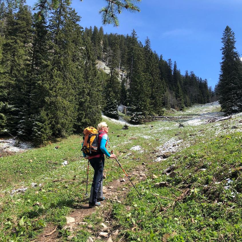 Auf dem Weg zum Bäckenalmsattel
