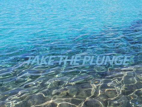 """""""take the plunge""""eine Ausstellung kuratiert von Konstanze Prechtl & Elisabeth Habig"""