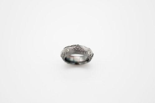 Weltenbummler-Ring + Diamanten