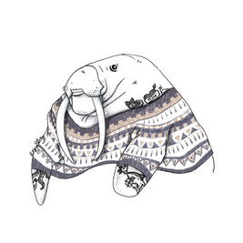 walrus_edited.jpg