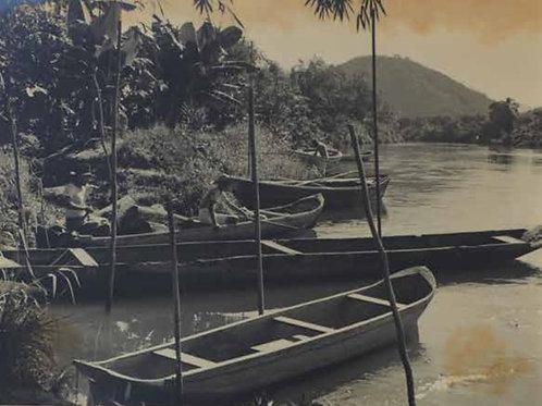 Canôas
