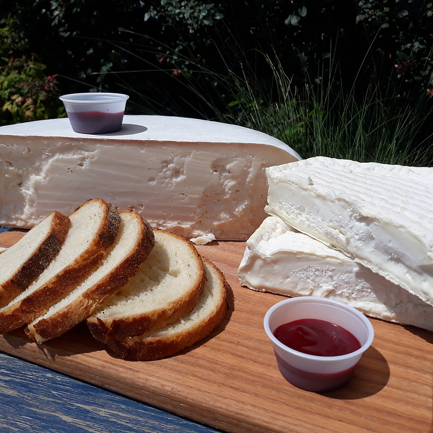 Cheese and Bread Delivery 6/3